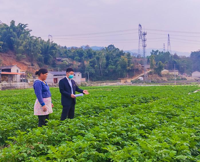 云南农信社利用优化金融服务 帮助返乡人员创业就业